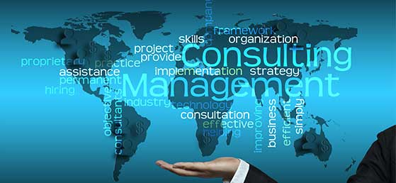 consultingglobemanagement